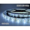 1M 2835 Tira LED IP65 flexible,UNICOLOR autoadhesiva super ALTO BRILLO
