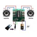 Mini Digital Amplificador potencia Audio 2,5V - 5V 3W AMP Module 5V USB PAM8403