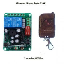 1 x Emisor y 1 x receptor inalámbrico de 2 canal de 220v