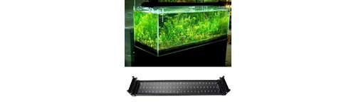 Pantalla LED para acuario