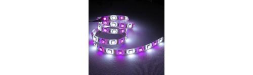 Tiras LED RGBW /RGBWW