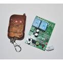 Emisor y receptor 12V inalámbrico RF de 2 canales de 12v