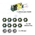 Kit Driver + 9 LED 1W blanco frio + 3 led Azul